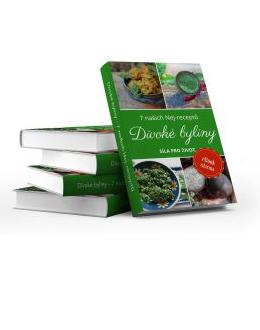 Divoké byliny – 7 našich nejlepších receptů