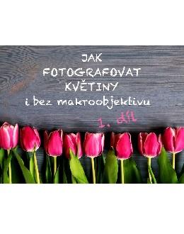 Jak fotografovat květiny i bez makroobjektivu 1. díl