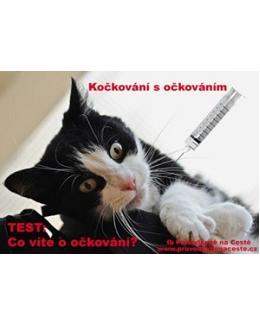 Kočkování s očkováním – TEST o povinných vakcínách